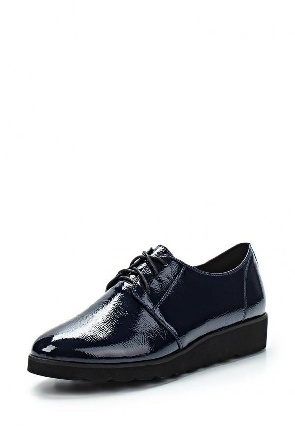 Ботинки Springway 121-V301-21 синие