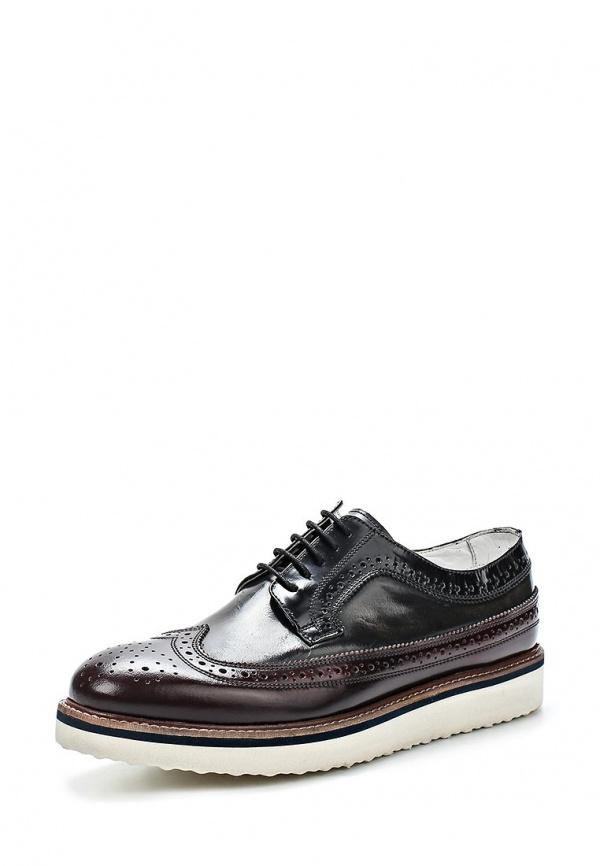 Туфли Paolo Vandini PI-TAUNLEY бордовые, чёрные