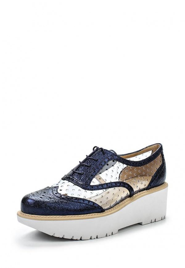 Ботинки Stuart Weitzman RL10799 прозрачный, синие