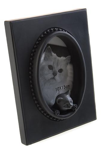 """Рамки для фотографий Красный куб Рамка для фото """"Любопытный котенок"""""""