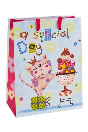 """Пакеты «С Днем рождения» Красный куб Пакет подарочный """"Особенный день"""""""