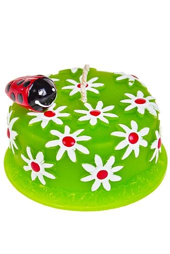 """Свечи для торта и вечеринок Красный куб Свеча """"Божья коровка на торте"""""""