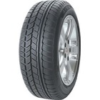 AVON Ice Touring (195/65 R15 91T)