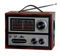 ������ electronics ��-307
