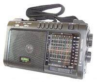 GlobusFM GR-118