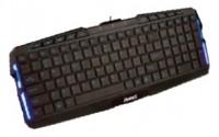 Aneex E-K1307 Black USB