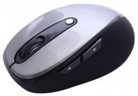 Ritmix RMW-220 Silver-Black USB
