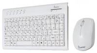 SmartBuy SBC-20313AG-W White USB
