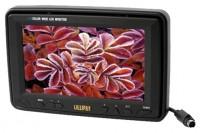 Lilliput Electronics 319GL-70NP