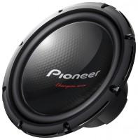 Pioneer TS-W310
