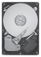 Seagate ST9300505SS