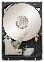 Seagate ST33000651SS