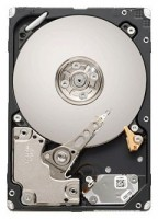 Seagate ST9600204SS