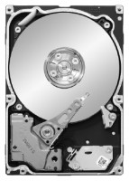 Seagate ST91000641SS
