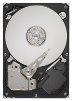 Seagate ST3320413AS