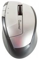 SmartBuy SBM-501AG-S Silver USB