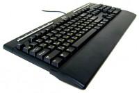 BTC 5309 Black PS/2