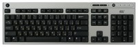 BTC 5109-SB Silver PS/2