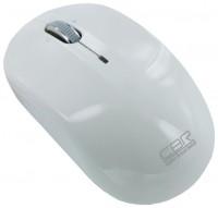 CBR CM 450 White USB