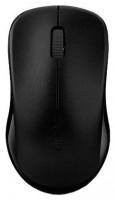 Rapoo Wireless Optical Mouse 1190 Black USB