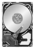 Seagate ST9300603SS