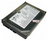 Seagate ST3160023AS