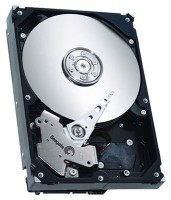Seagate ST3160812AS