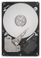 Seagate ST3160318AS