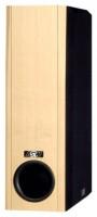 ASW Loudspeaker OPUS SW 200 / 06