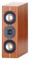 ASW Loudspeaker Cantius CS 304