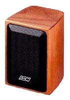 ASW Loudspeaker Opus S