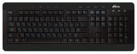 Ritmix RKB-110 Black USB