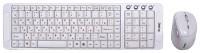 Dialog KMRLK-0318U White USB