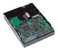 HP RH201AA
