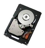 IBM 42D0389