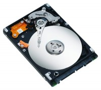 Seagate ST980811AS