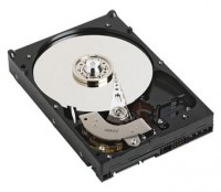 Western Digital WD5000YS