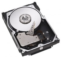 Seagate ST3300007LW