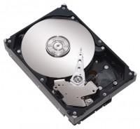 Seagate ST3808110AS
