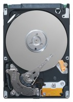 Seagate ST9250410AS
