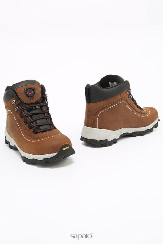 Ботинки Ascot Ботинки коричневые
