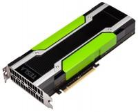 PNY Tesla K80 560Mhz PCI-E 3.0 24576Mb 5000Mhz 768 bit
