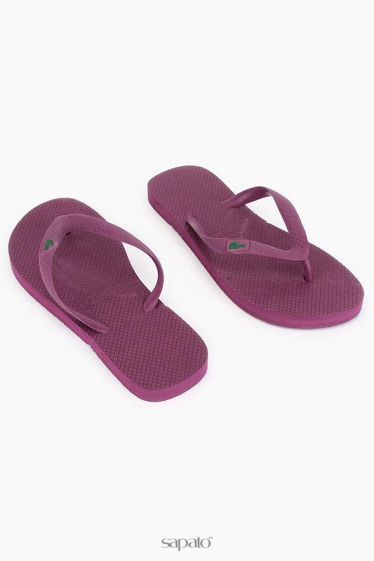 Шлепанцы Lacoste Шлепанцы фиолетовые