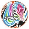 NOVATRACK Zebra 16 (2016)