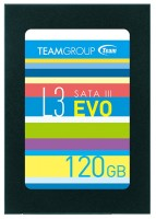 Team Group T253LE120GTC103