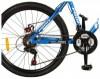 Profi Trike G24A316-2